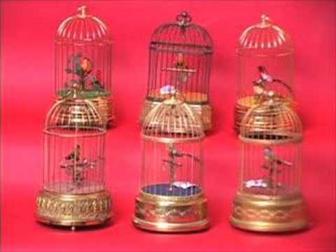 six bird cages in unison