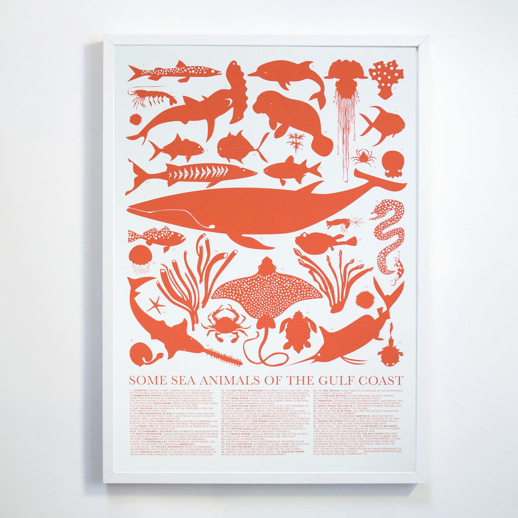 Some Sea Animals of the Gulf Coast Art Print