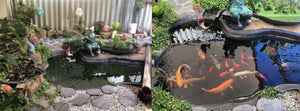Large Fishpond/Water Feature Pack