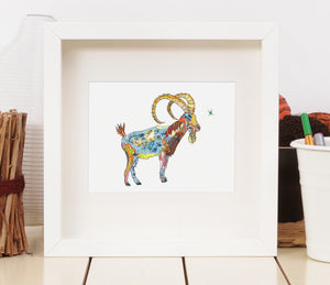 Ibex - Limited Edition Art Print