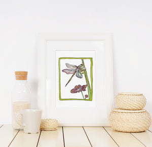 Dragonfly - Limited Edition Art Print