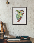 Koala - Limited Edition Art Print