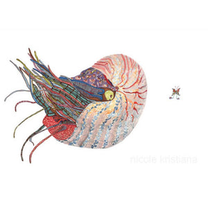 Nautilus - Limited Edition Art Print
