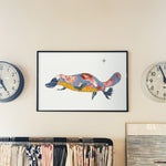 Platypus - Limited Edition Art Print
