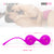 Neojoy Geisha Balls Kegel Balls for Pelvic Training - Exercise Weights Toy