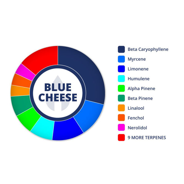 Blue Cheese Profile by True Terpenes