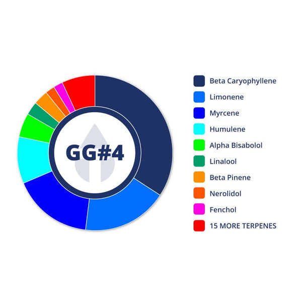 GG#4 Profile by True Terpenes