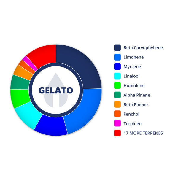 Gelato Profile by True Terpenes