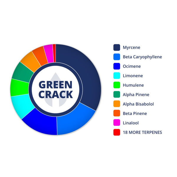 Perfil de Green Crack por True Terpenes