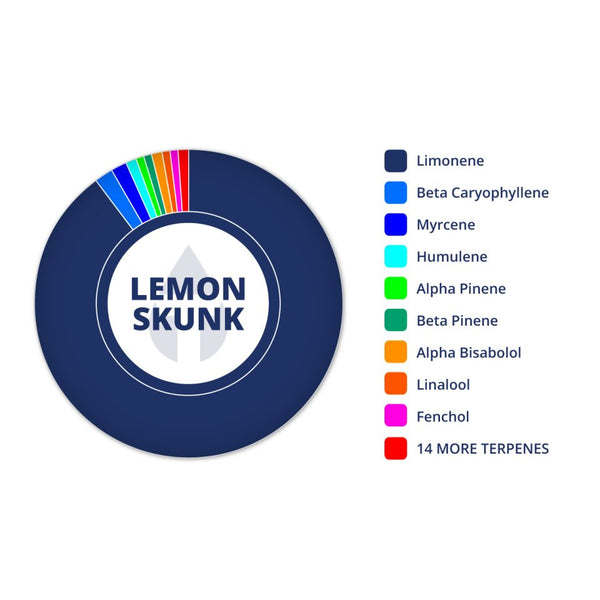 Lemon Skunk Profile by True Terpenes