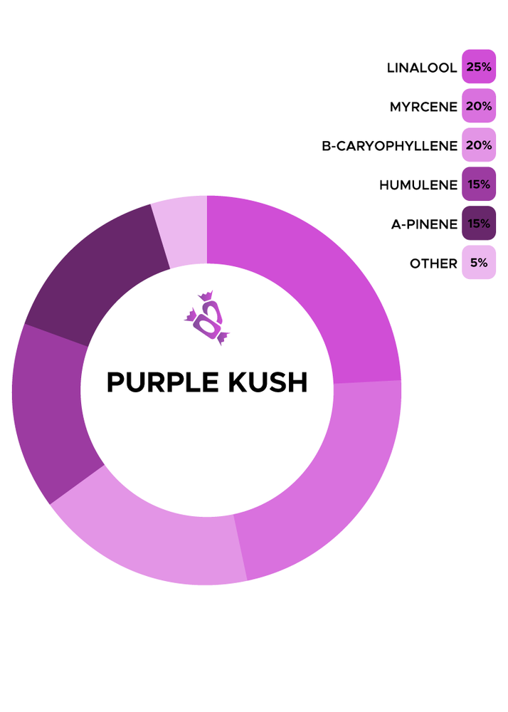 Purple Kush Strain de Flow Scientific