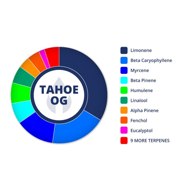 Tahoe OG Profile by True Terpenes