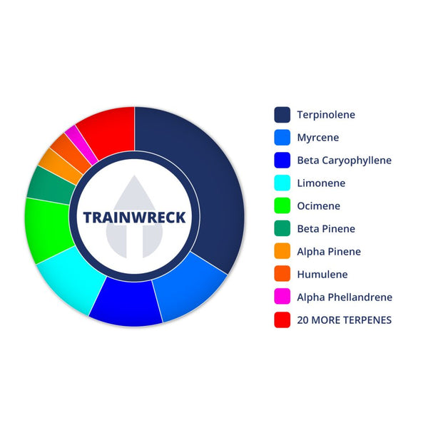 Perfil de Trainwreck de True Terpenes