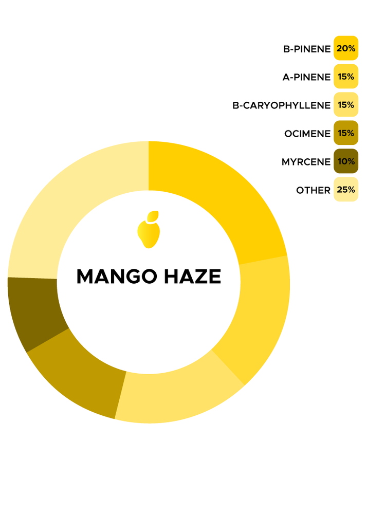 Mango Haze Strain de Flow Scientific