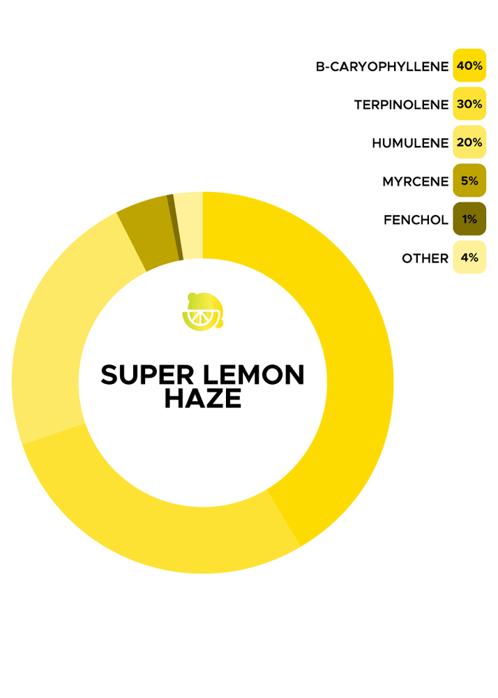 Super Lemon Haze Strain de Flow Scientific