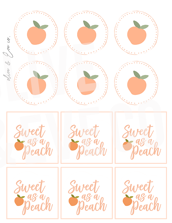 Peach Collection ♡