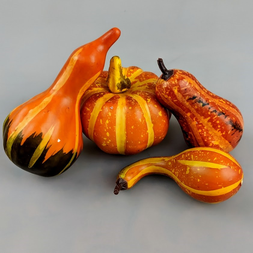 Thanksgiving Pumpkin & Gourd 4pc Set