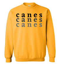 Load image into Gallery viewer, Canes Ombre Crewneck