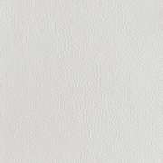 White Finish Color Swatch