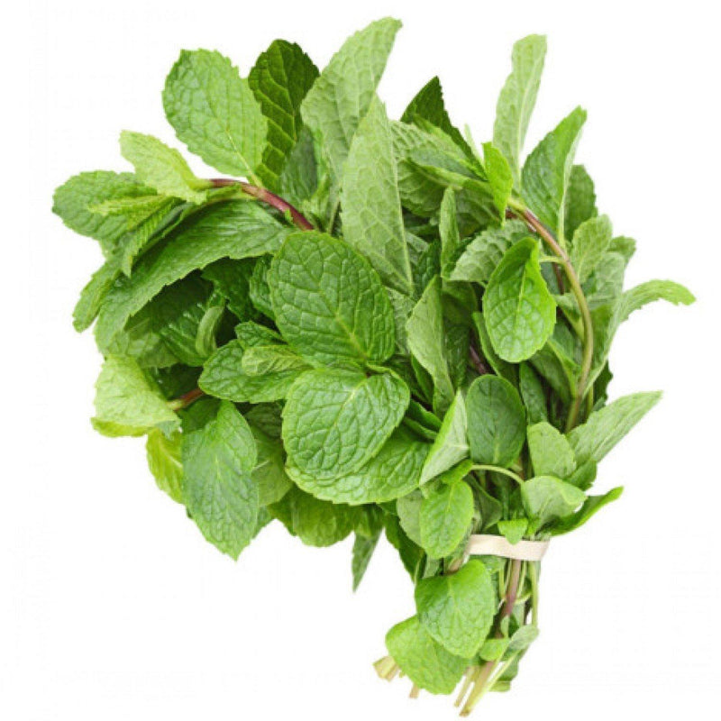 Fresh Mint - MirchiMasalay