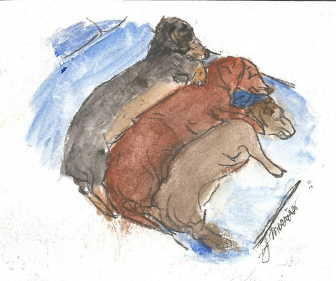 Napping Weenies Watercolor Print
