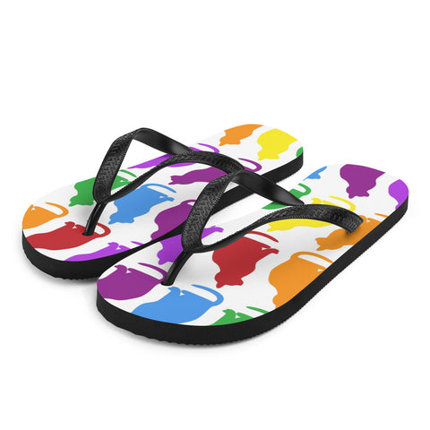 Rainbow kitty Flip-Flops