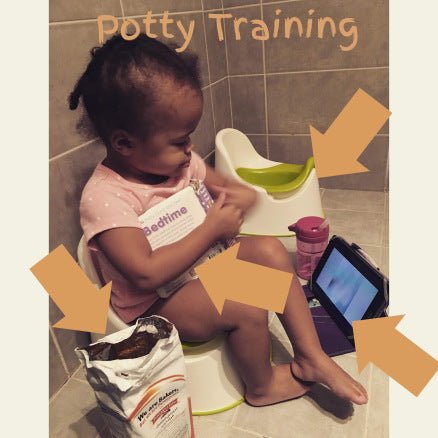 I. HATE. POTTY. TRAINING.