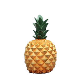 Tirelire<br/> Ananas - Tirelissimo