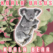 Load image into Gallery viewer, Koala Ursus (Koala Bear)