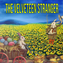 Load image into Gallery viewer, The Velveteen Stranger