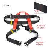 Rock Climbing Safety Belt Harness