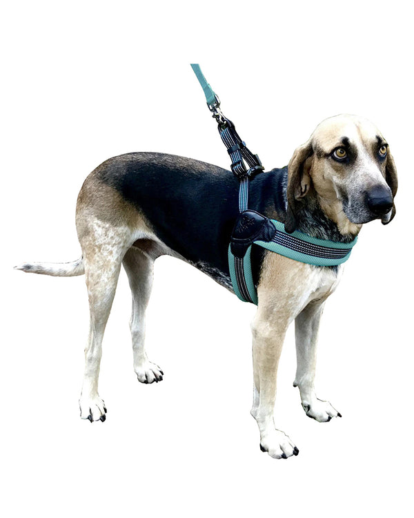 Sporn® Easy Fit Harness™