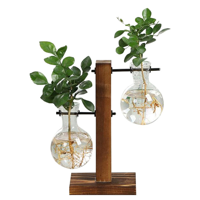 Transparent Vase Wooden Frame - exploreyourfashion