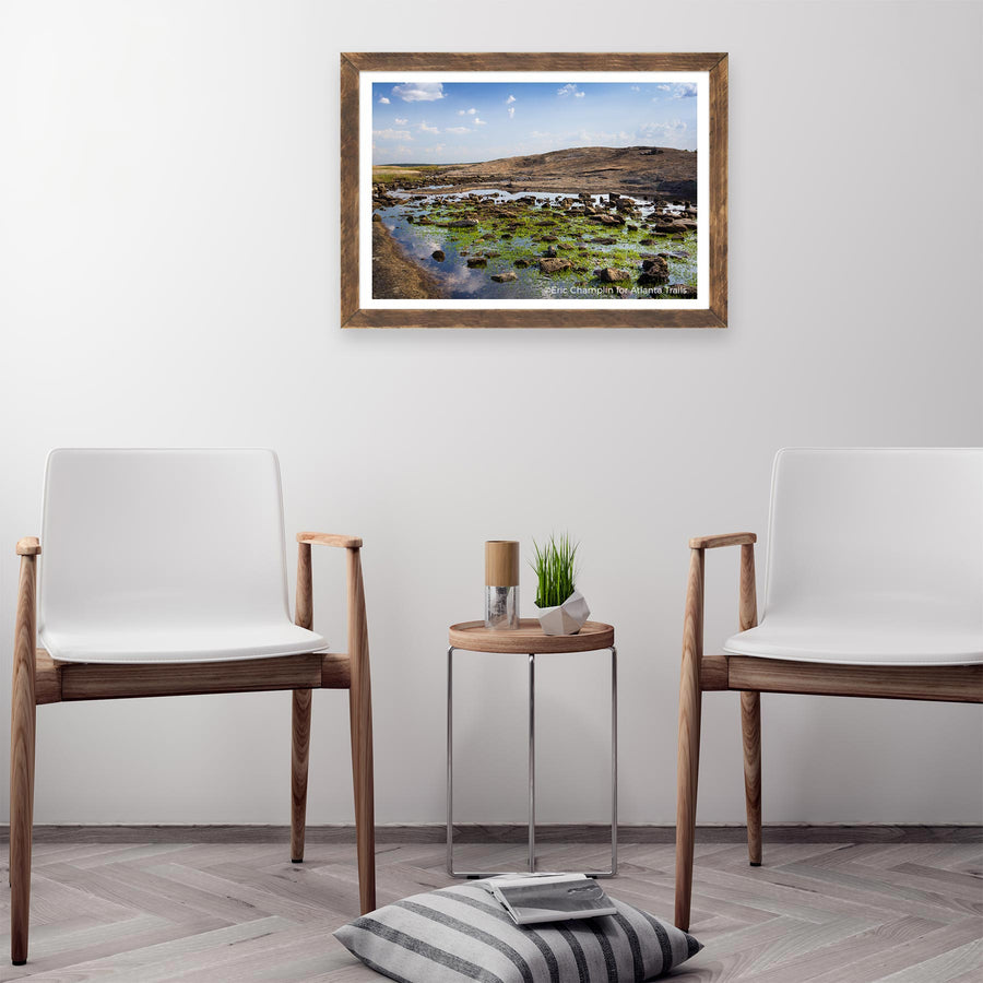 Arabia Mountain Photo Art Print