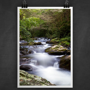 Jacks River Trail Photo Art Print