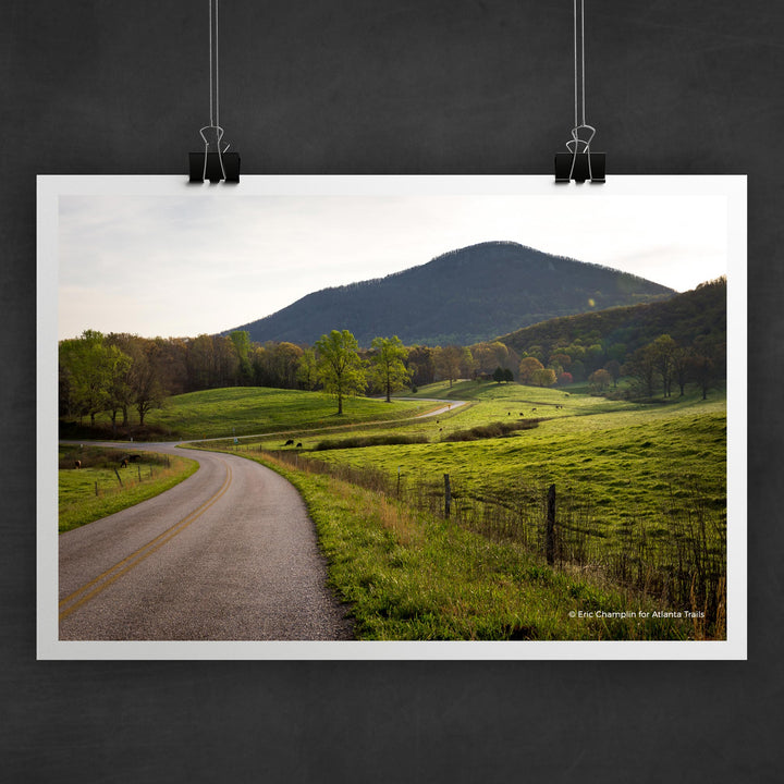 Yonah Mountain Photo Art Print
