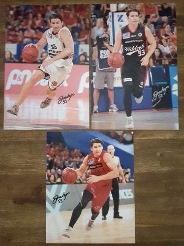 DAMIAN MARTIN SIGNED WILDCATS 8X12
