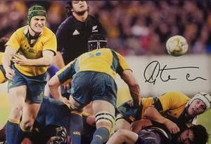 "Matt Giteau personally signed photos 12x18"" COA - Heroes Framing & Memorabilia"