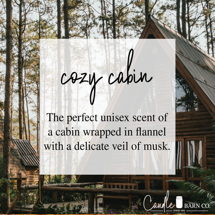 Cozy Cabin 4oz TIN Soy Candles