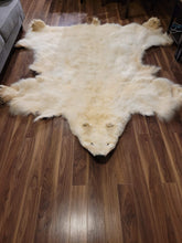 Load image into Gallery viewer, Polar Bear Fur Hide