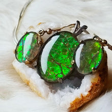 Load image into Gallery viewer, Ammolite Emerald
