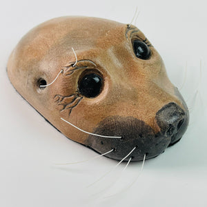 Harbor Seals - Seal Heads
