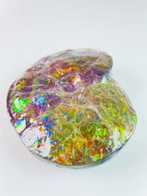 Load image into Gallery viewer, Ammolite Fossil - Rare purple color Placentercis Intecalare