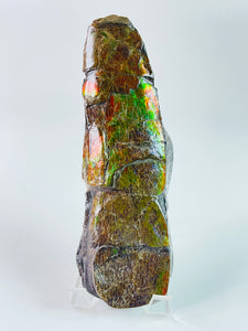 Ammolite BAC Specimen - Dragon Skin Style - Rectangle Shape