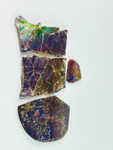 Load image into Gallery viewer, Ammolite