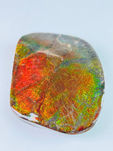 Load image into Gallery viewer, Ammolite Paperweight