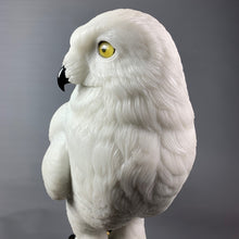 Load image into Gallery viewer, Snowy Owl