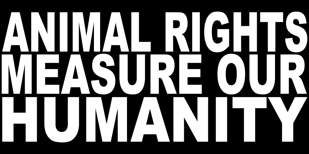 ANIMAL RIGHTS MEASURE OUR HUMANITY