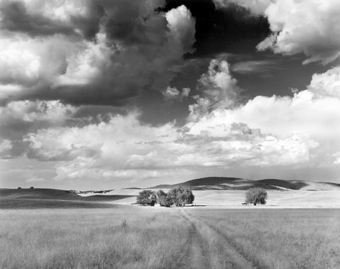 FARM AND CLOUDS, MULE CREEK, NEW MEXICO
