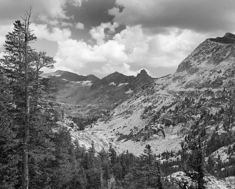 MT. ANSEL ADAMS, LYELL CANYON, YOSEMITE